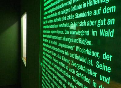 Ausstellungsgestaltung - Ausstellungsgestaltung-Naturkundemuseum-phosphoriszierende-Schrift.jpg